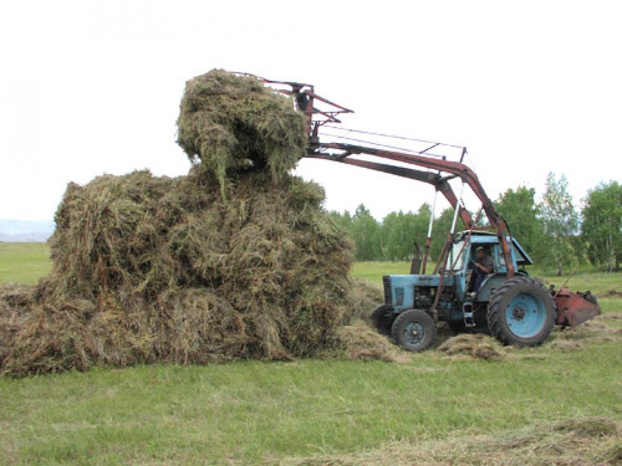 Стогомет в Новосибирске – быстрая сенозаготовка