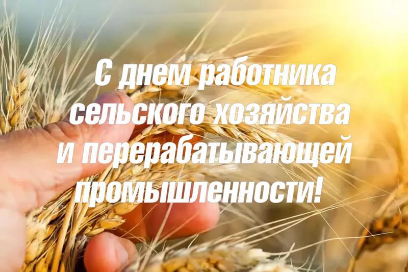 Поздравляем с Днем работника сельского хозяйства и перерабатывающей промышленности