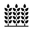 Аэрация посевов